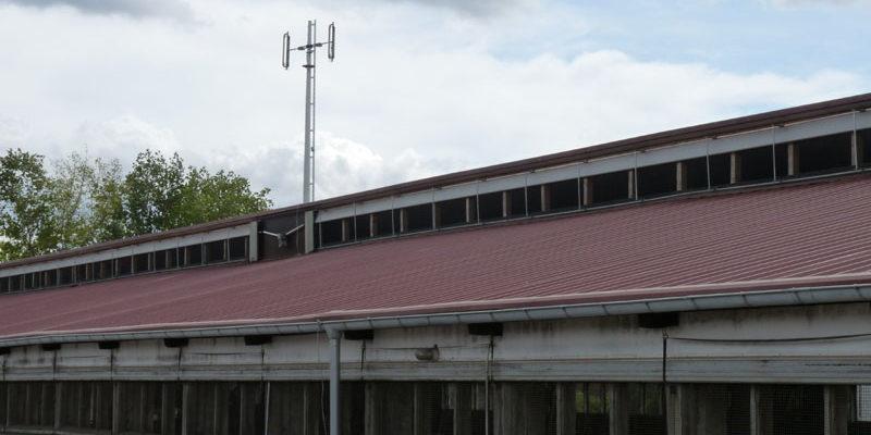 Wickellüftung Original Lubratec, Variante unten öffnend, L= 96m Stalllänge 96m, im Dachbereich mit mittig angebrachten Antrieb, im Bereich der Stallwand ist der Antrieb am Stallanfang montiert außen sichtbar die Sturmabspannung durch einen PES-Gurt.